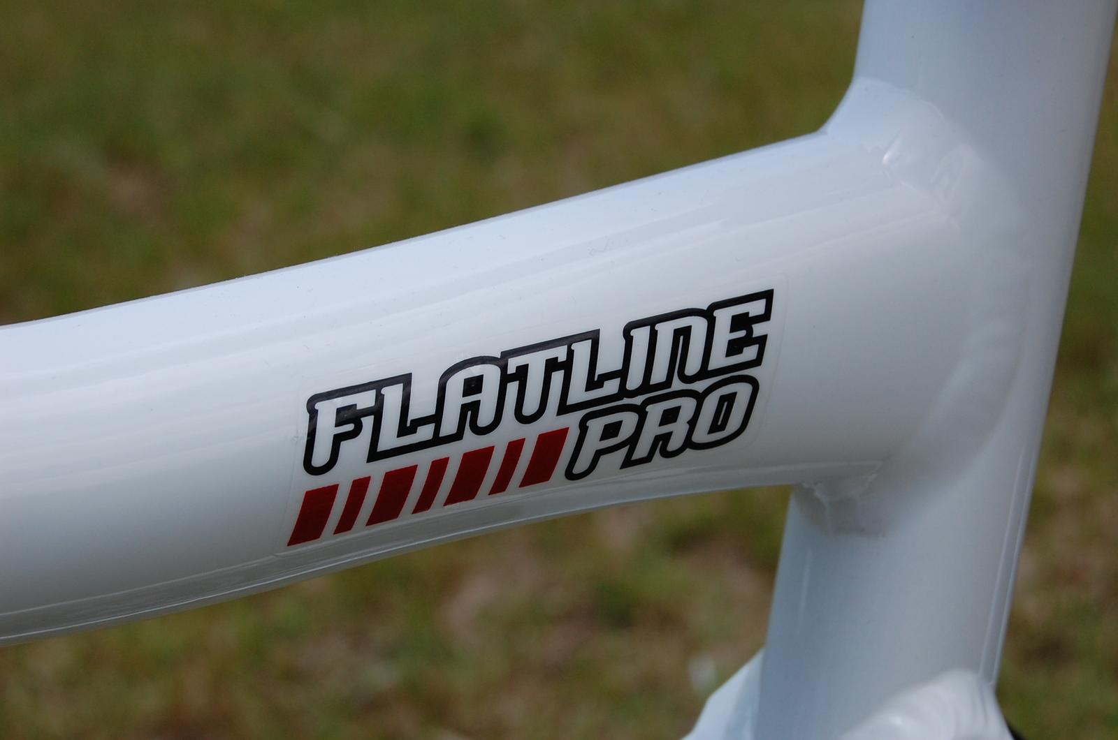 Flatline_054